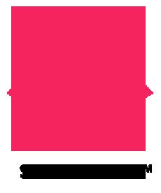 SilverFox Web Designers Top Web Design Company in Sri Lanka